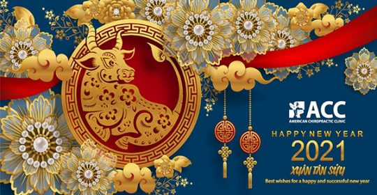 HOLIDAY NOTICE OF NEW YEAR & LUNAR NEW YEAR 2021