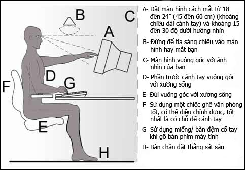 bog_chair_001