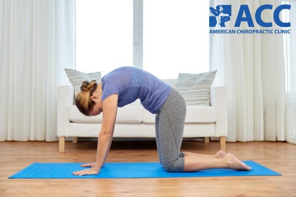 bài tập giảm đau lưng theo tư thế con mèo